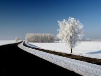 nederland (4).jpg