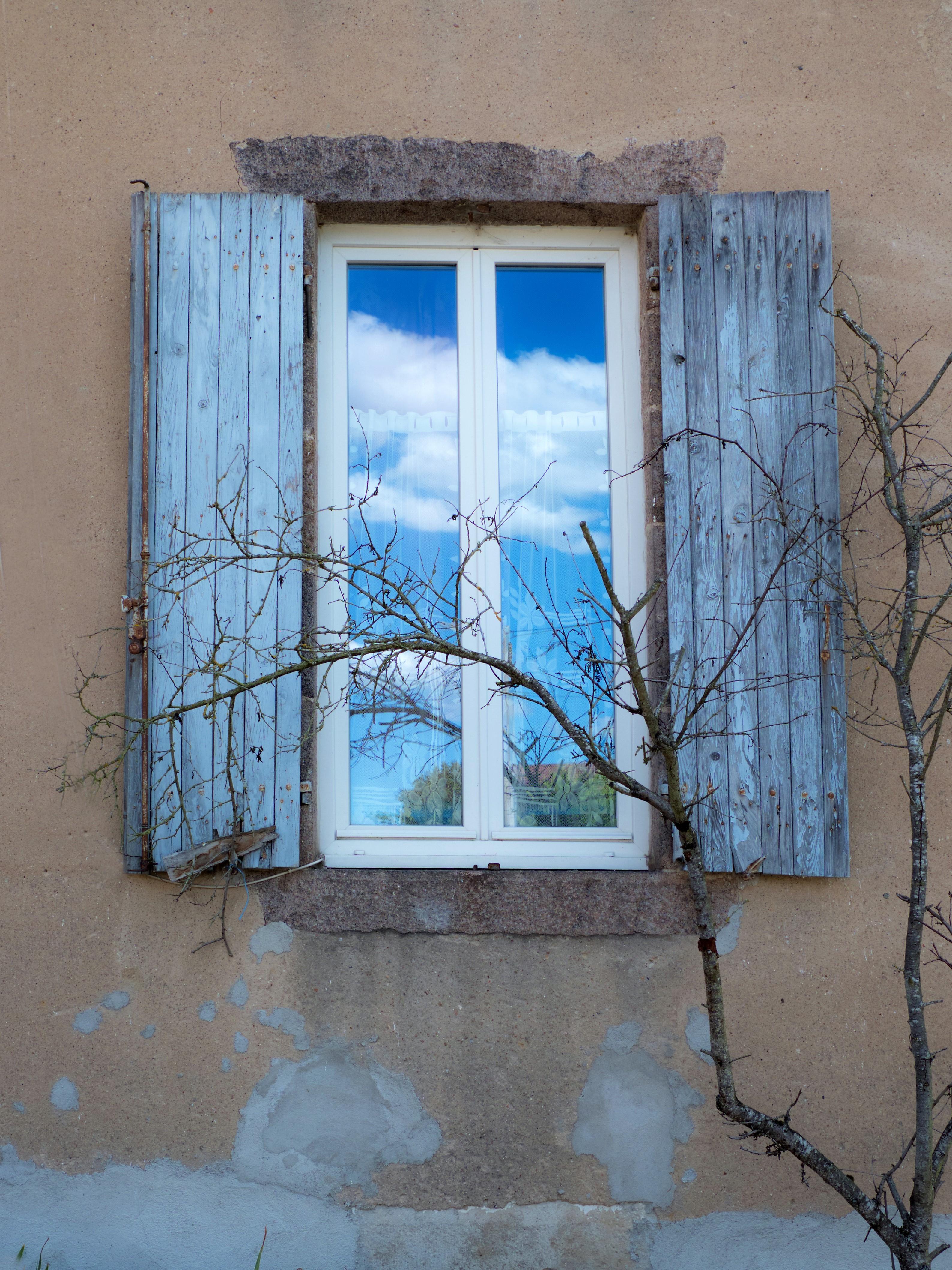 raam met tak