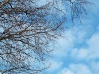 lucht, l;meer